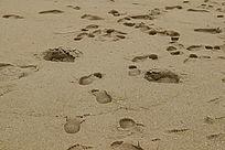海滩脚印摄影