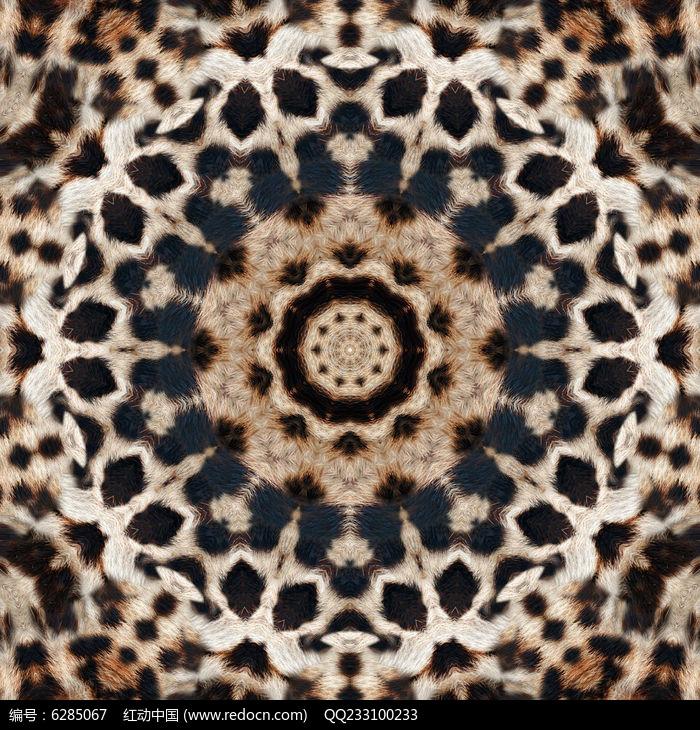 豹纹印花设计图片