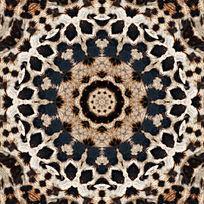 豹纹印花设计