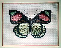 蝴蝶图案十字绣