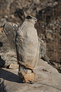 企鹅形怪石