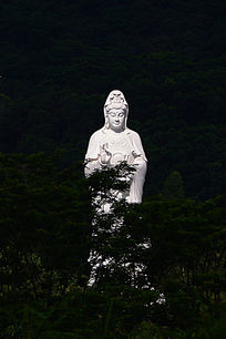 森林里的观音菩萨雕像