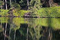 原生态湖景