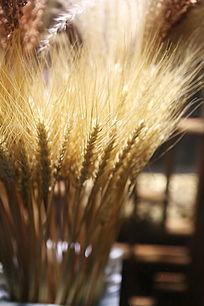 金色仿真小麦穗