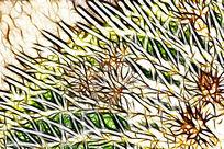 抽象仙人球艺术画