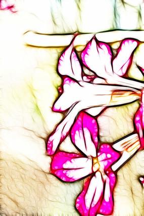 沙漠玫瑰无框画