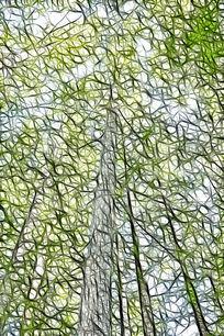 水杉树林抽象艺术画