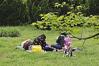 草地阳光家人
