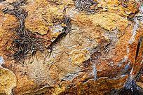 石头纹理背景