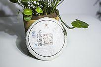 小盆栽旁的普洱茶茶饼