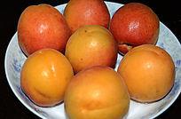 一盘大黄杏