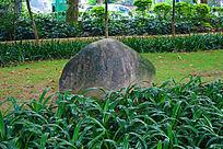 草丛中的石头