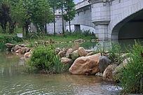 河头隔开的小溪