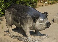 石雕十二属相猪