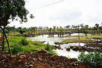 河塘湖泊风景