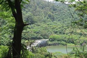 林间湖泊摄影