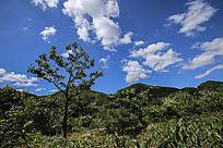 山丘与蓝天