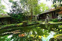 南山植物园园林湖泊倒影