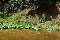小河流摄影