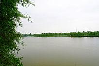 美丽的湖景