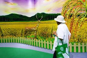 金色稻田壁纸和农民