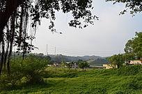 乡村田园摄影