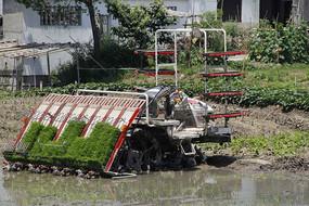 稻田插秧机