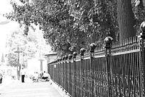 铁栅栏的美