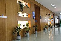 文化馆形象展示墙