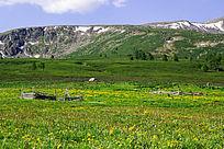 喀纳斯山峰山脉草原风景素材图
