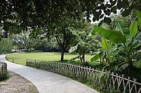 苏堤公园小径草坪
