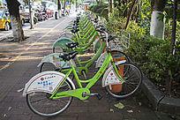 一排公共自行车