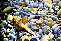 贝壳装饰画