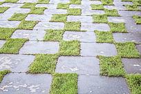 格子形状的草坪