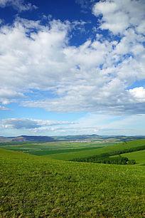 原野牧场风景