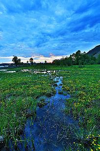 湿地沼泽风景