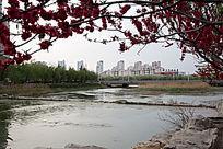 河边城市风光