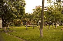 学校内小树林