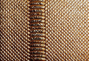 金色皮纹背景图片