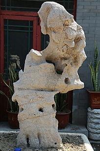 人面形太湖石