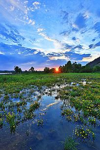 湿地沼泽落日