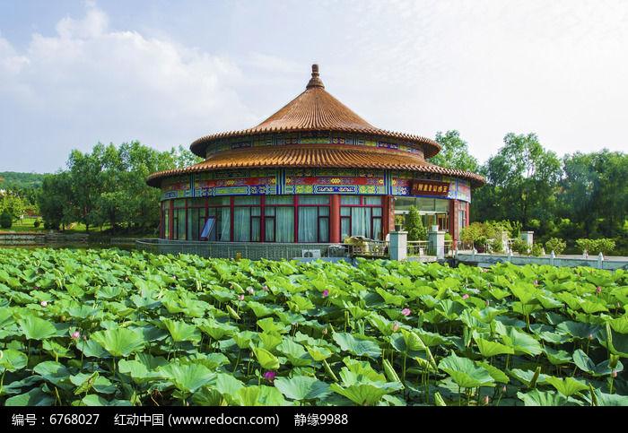鞍山玉佛山书画院与荷叶池塘图片