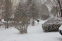 雪中园林景观图片