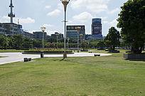 茂名市园林大草坪风光