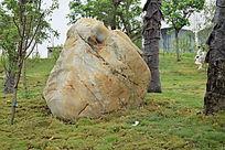 园林景观石图片