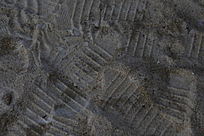 布满脚印 的沙子