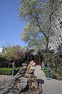 太湖石及海棠树