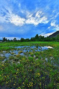 湿地暮色风景