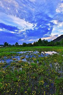湿地自然地理风光