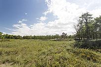 景色优美生态田园